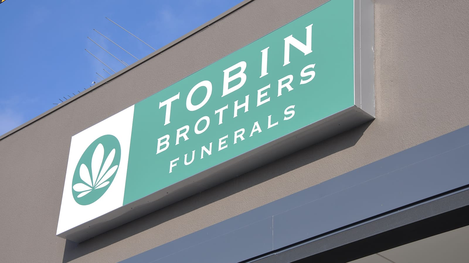 light-box-tobin-bros