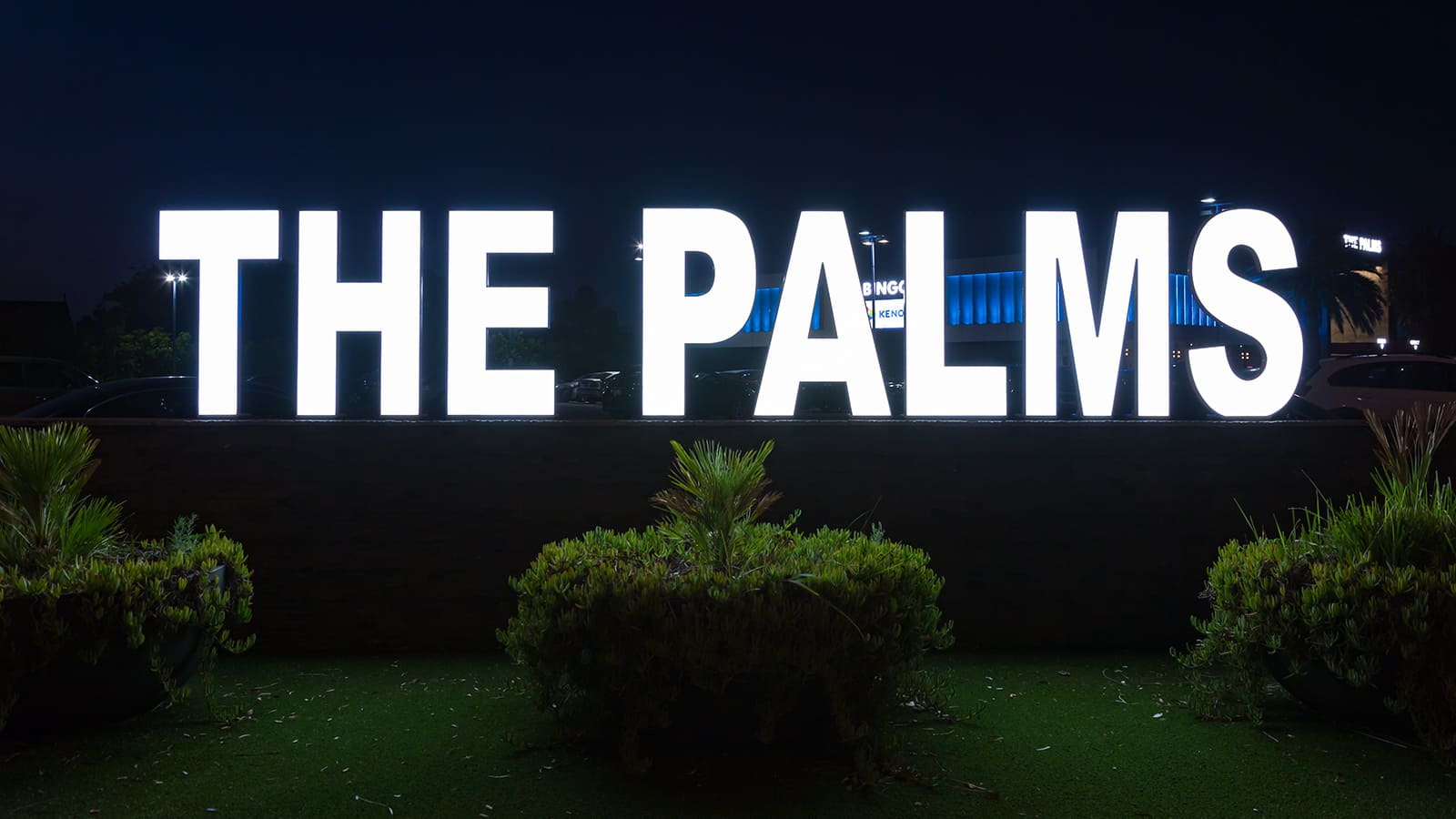 projects-the-palms-1